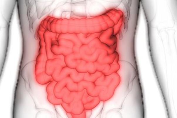 بیماری سلیاک ریسک التهاب روده را افزایش می دهد
