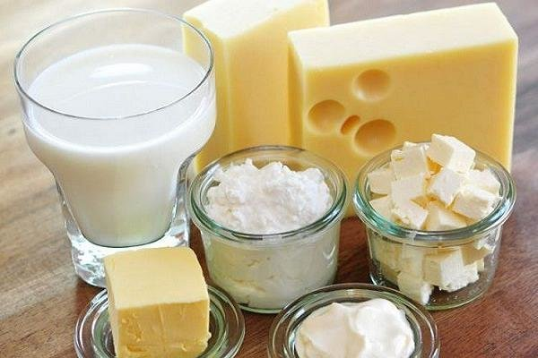عدم تاثیر لبنیات در پیشگیری از شکستگی استخوان ها در میانسالی