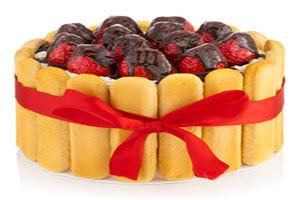 طرز تهیه چیز کیک با لیدی فینگر